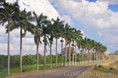 Belize_1002