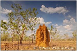 Park Narodowy Kakadu AUSTRALIA