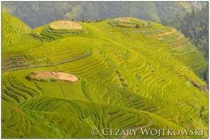 Tarasy ryżowe w Longji CHINY