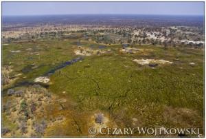 Delta Okawango BOTSWANA
