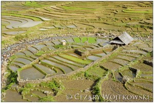 Tarasy ryżowe w Sapa prowincja Lào Cai WIETNAM