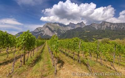 Szwajcaria_1026